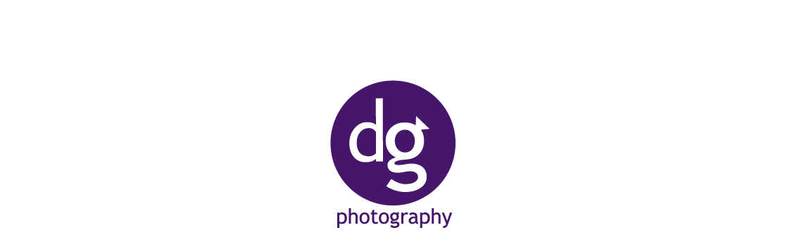 DG Photography: Weddings, Portraits, Events logo